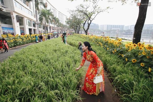 Phố nhà giàu Phú Mỹ Hưng đón Tết Canh Tý với đường hoa xuân đầy lúa và bắp ngô, tái hiện khung cảnh làng quê bình dị - Ảnh 3.