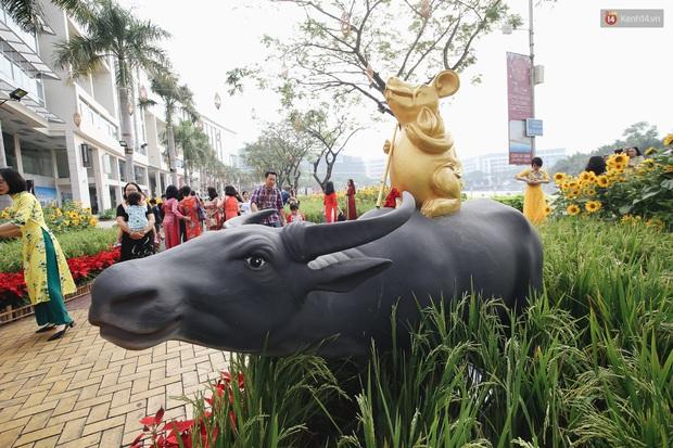 Phố nhà giàu Phú Mỹ Hưng đón Tết Canh Tý với đường hoa xuân đầy lúa và bắp ngô, tái hiện khung cảnh làng quê bình dị - Ảnh 4.