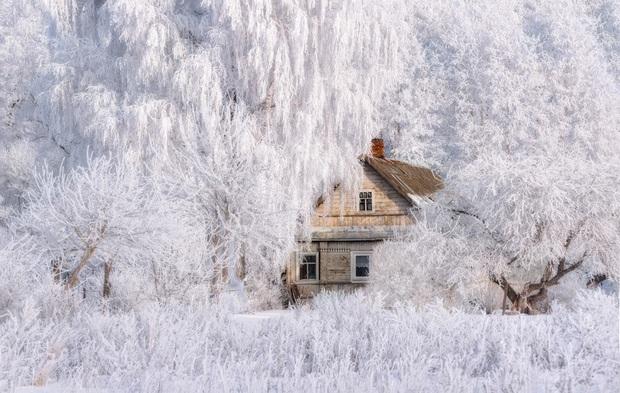 Chùm ảnh mùa đông với băng tuyết trắng xóa phủ khắp vạn vật đẹp đến mê hồn, trông tựa như khung cảnh trong truyện cổ tích - Ảnh 4.