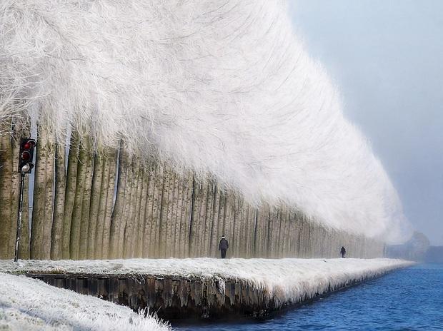 Chùm ảnh mùa đông với băng tuyết trắng xóa phủ khắp vạn vật đẹp đến mê hồn, trông tựa như khung cảnh trong truyện cổ tích - Ảnh 2.