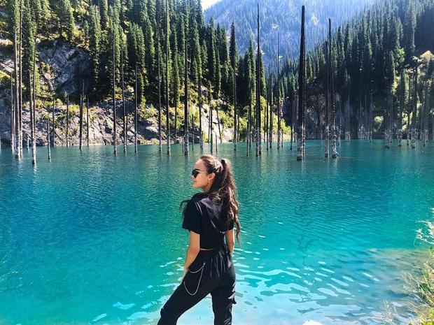 Hồ nước với những thân cây mọc ngược lên trời rùng rợn nhất thế giới, tìm ra nguyên nhân hiện tượng lạ ai cũng bất ngờ - Ảnh 9.
