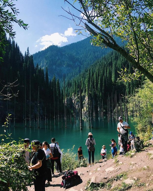 Hồ nước với những thân cây mọc ngược lên trời rùng rợn nhất thế giới, tìm ra nguyên nhân hiện tượng lạ ai cũng bất ngờ - Ảnh 27.