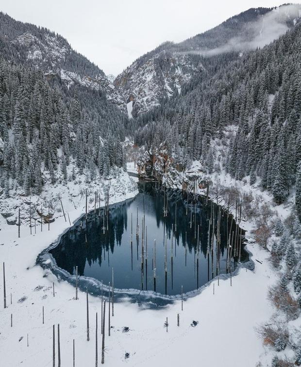 Hồ nước với những thân cây mọc ngược lên trời rùng rợn nhất thế giới, tìm ra nguyên nhân hiện tượng lạ ai cũng bất ngờ - Ảnh 18.