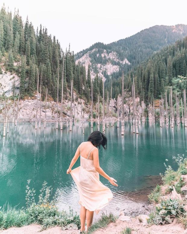 Hồ nước với những thân cây mọc ngược lên trời rùng rợn nhất thế giới, tìm ra nguyên nhân hiện tượng lạ ai cũng bất ngờ - Ảnh 5.