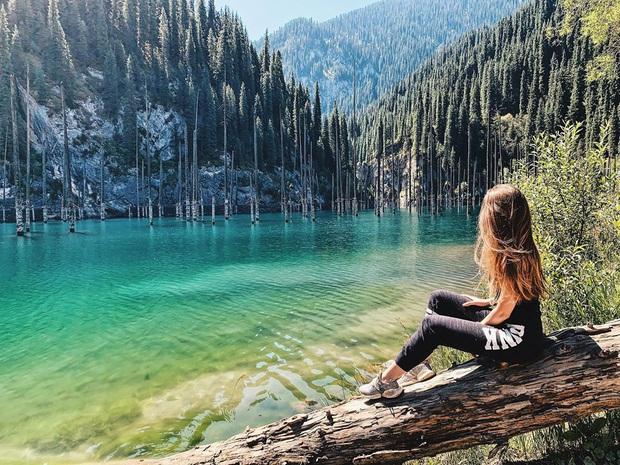 Hồ nước với những thân cây mọc ngược lên trời rùng rợn nhất thế giới, tìm ra nguyên nhân hiện tượng lạ ai cũng bất ngờ - Ảnh 14.