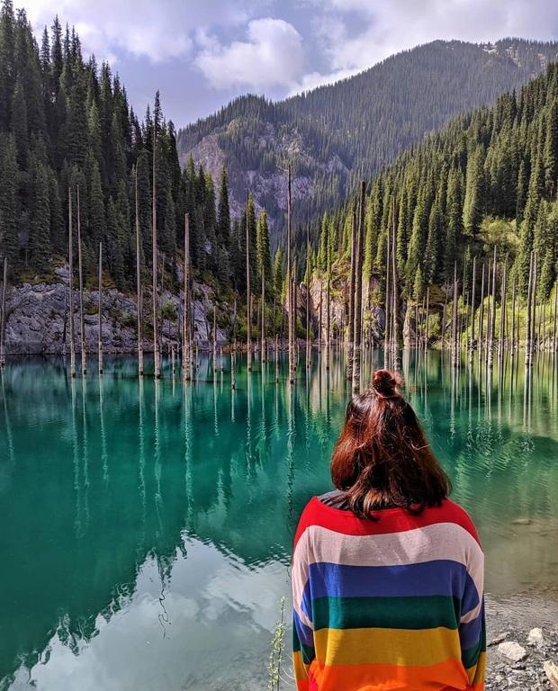 Hồ nước với những thân cây mọc ngược lên trời rùng rợn nhất thế giới, tìm ra nguyên nhân hiện tượng lạ ai cũng bất ngờ - Ảnh 15.