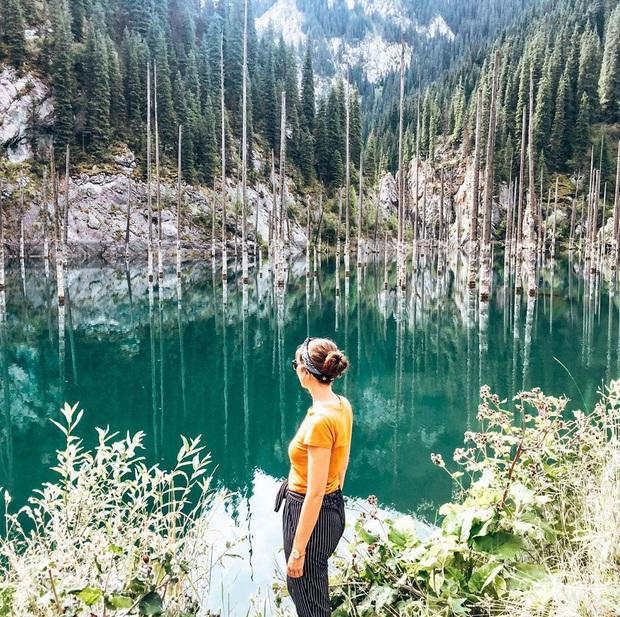 Hồ nước với những thân cây mọc ngược lên trời rùng rợn nhất thế giới, tìm ra nguyên nhân hiện tượng lạ ai cũng bất ngờ - Ảnh 12.