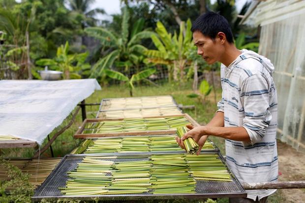 Ống hút cỏ bàng của chàng doanh nhân 8X Việt Nam gây ấn tượng mạnh với truyền thông quốc tế, dân mạng hết lời khen ngợi - Ảnh 2.