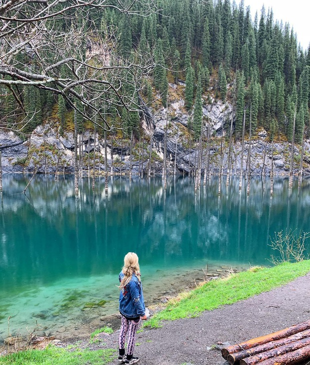 Hồ nước với những thân cây mọc ngược lên trời rùng rợn nhất thế giới, tìm ra nguyên nhân hiện tượng lạ ai cũng bất ngờ - Ảnh 17.
