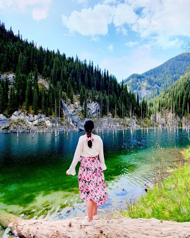 Hồ nước với những thân cây mọc ngược lên trời rùng rợn nhất thế giới, tìm ra nguyên nhân hiện tượng lạ ai cũng bất ngờ - Ảnh 26.