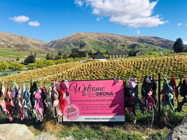 """""""Hàng rào áo ngực"""" độc nhất thế giới vô tình trở thành điểm check-in hút khách tại New Zealand, tìm hiểu nguồn gốc hình thành ai cũng ngạc nhiên - Ảnh 13."""