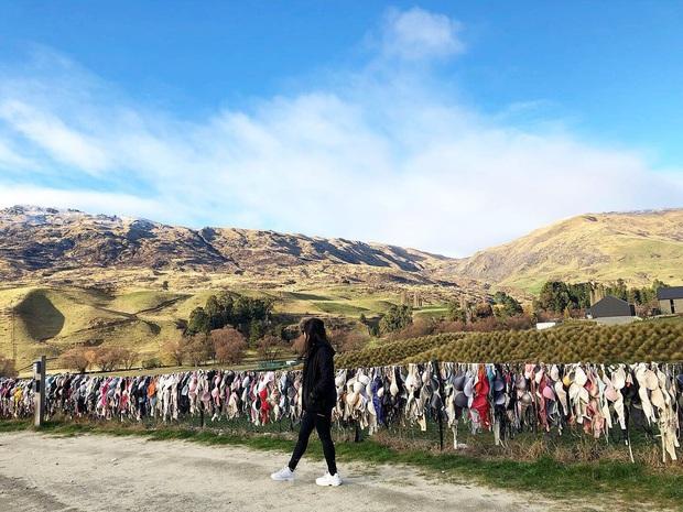 """""""Hàng rào áo ngực"""" độc nhất thế giới vô tình trở thành điểm check-in hút khách tại New Zealand, tìm hiểu nguồn gốc hình thành ai cũng ngạc nhiên - Ảnh 3."""