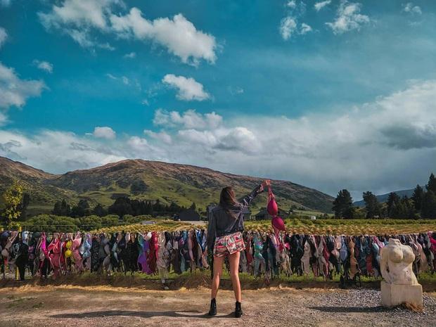 """""""Hàng rào áo ngực"""" độc nhất thế giới vô tình trở thành điểm check-in hút khách tại New Zealand, tìm hiểu nguồn gốc hình thành ai cũng ngạc nhiên - Ảnh 10."""