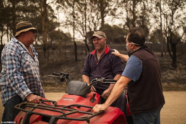 Chứng kiến gia súc đau đớn vì bỏng nặng do hỏa hoạn kinh hoàng tại Úc, nông dân xót xa bắn chết 20 con bò để giải thoát cho chúng - Ảnh 5.