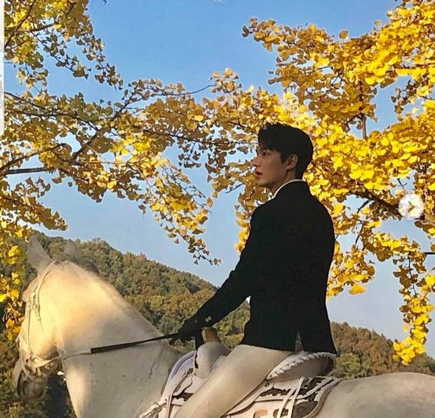 5 cặp đôi Hàn hứa hẹn gây sốt màn ảnh 2020, mong chờ nhất là lần yêu đầu của Lee Min Ho và nàng thơ Golbin - Ảnh 2.