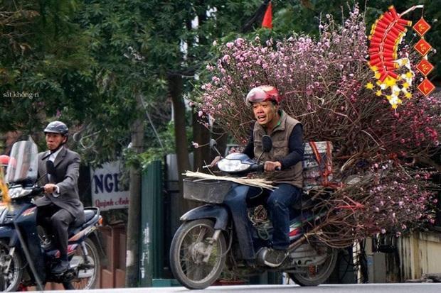 Cười lăn với ảnh chế tuyển thủ Việt Nam ngày giáp Tết: Quang Hải, Công Phượng đi buôn đào, thầy Park cũng hai tay hai cành đào chơi Tết - Ảnh 2.