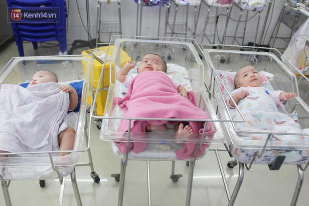 Mẹ đẻ ở bệnh viện Từ Dũ rồi bỏ đi biệt tích, 3 bé gái 4 tháng tuổi phải chuyển đến nơi nuôi trẻ mồ côi trước Tết - Ảnh 4.