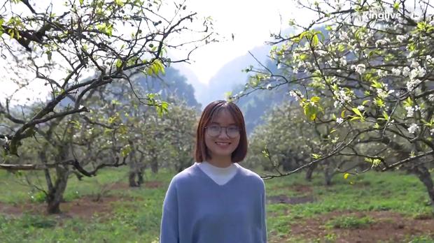 Clip: Vẻ đẹp ngỡ ngàng giữa rừng mận nở bung hoa trắng cả thung lũng ở Mộc Châu ngày giáp Tết - Ảnh 3.
