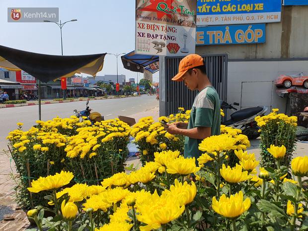 Chồng đột quỵ rồi mất trong lúc bán hoa Tết ở Sài Gòn, vợ cùng các con vội về đưa tang với hơn 2 tấn dưa còn nằm lại vỉa hè - Ảnh 4.