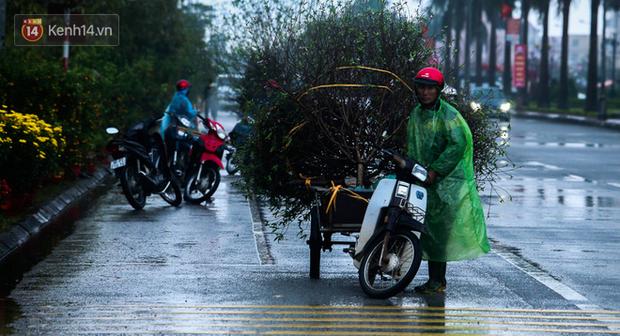 Chùm ảnh: Đội mưa rét chở cây cảnh thuê dịp Tết, người lao động kiếm tiền triệu mỗi ngày - Ảnh 5.