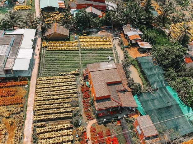 Đứng hình với loạt ảnh làng hoa Tết đẹp nhất miền Tây rực rỡ sắc màu từ trên cao, hoá ra lại nằm gần xịt Sài Gòn - Ảnh 11.