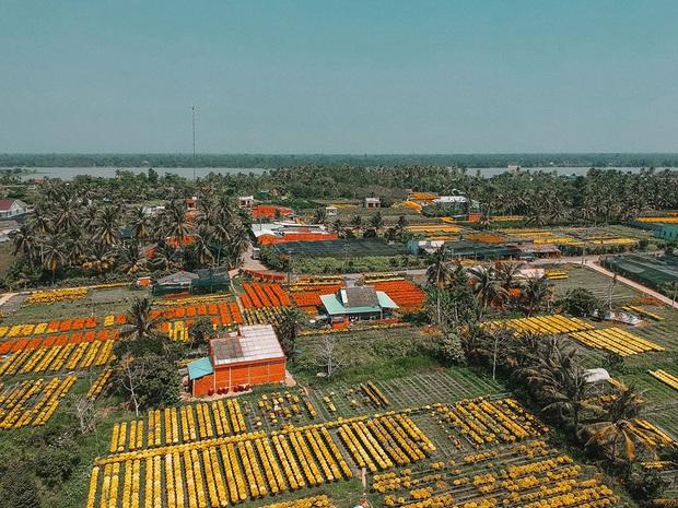 Đứng hình với loạt ảnh làng hoa Tết đẹp nhất miền Tây rực rỡ sắc màu từ trên cao, hoá ra lại nằm gần xịt Sài Gòn - Ảnh 8.