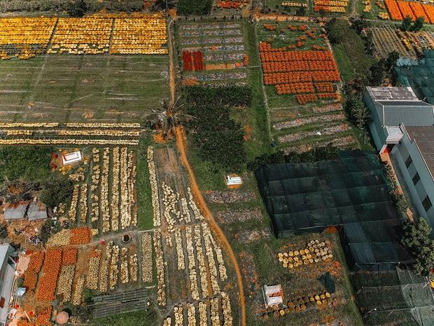 Đứng hình với loạt ảnh làng hoa Tết đẹp nhất miền Tây rực rỡ sắc màu từ trên cao, hoá ra lại nằm gần xịt Sài Gòn - Ảnh 2.