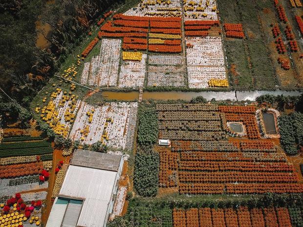 Đứng hình với loạt ảnh làng hoa Tết đẹp nhất miền Tây rực rỡ sắc màu từ trên cao, hoá ra lại nằm gần xịt Sài Gòn - Ảnh 12.