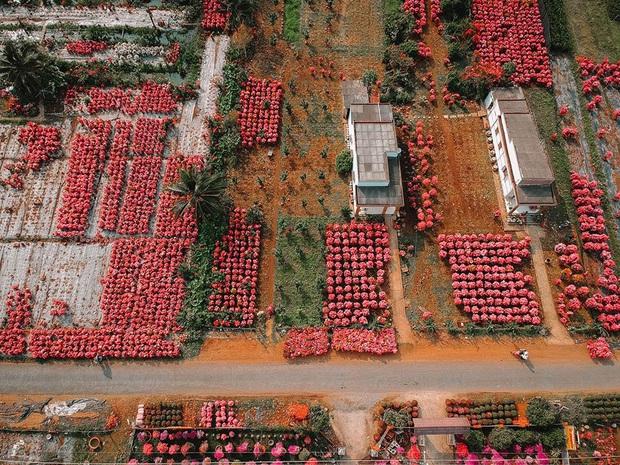 Đứng hình với loạt ảnh làng hoa Tết đẹp nhất miền Tây rực rỡ sắc màu từ trên cao, hoá ra lại nằm gần xịt Sài Gòn - Ảnh 5.