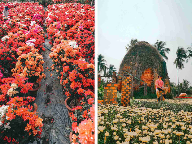 Đứng hình với loạt ảnh làng hoa Tết đẹp nhất miền Tây rực rỡ sắc màu từ trên cao, hoá ra lại nằm gần xịt Sài Gòn - Ảnh 14.
