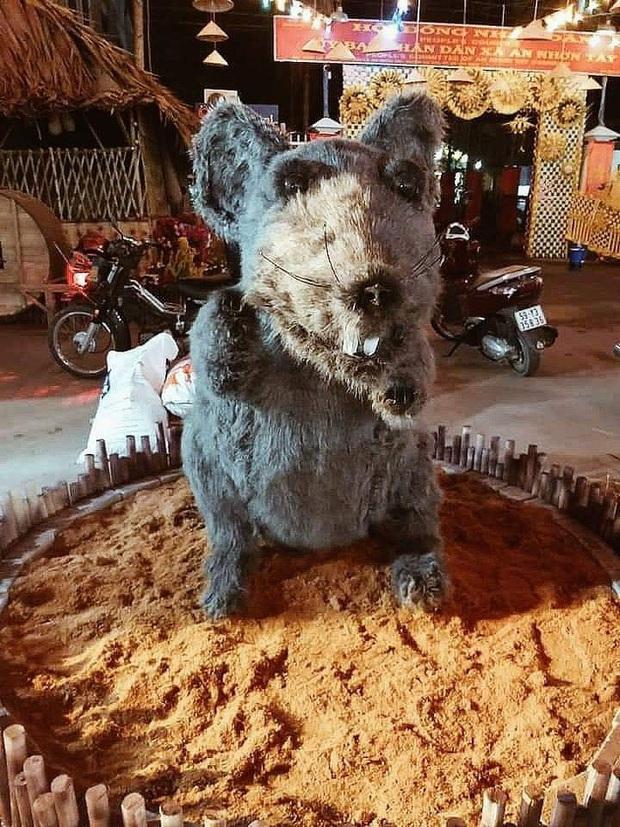 Hình ảnh linh vật chuột mình đầy lông lá chưng Tết ở Củ Chi khiến bất kì chú mèo nào nhìn thấy cũng phải khóc thét - Ảnh 1.