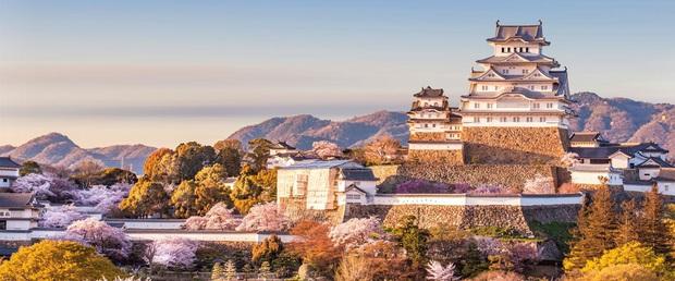 Lộ diện top 10 hộ chiếu quyền lực nhất thế giới năm 2020, Nhật Bản xuất sắc giành ngôi vương - Ảnh 1.