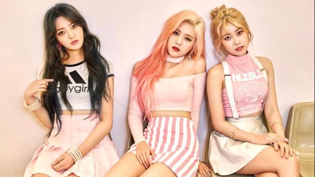 13 nhóm nhỏ xuất sắc của Kpop: 2 nhóm có MV trên 100 triệu lượt xem, nhóm tan rã vì doanh số thấp và hẹn hò với nhau - Ảnh 11.