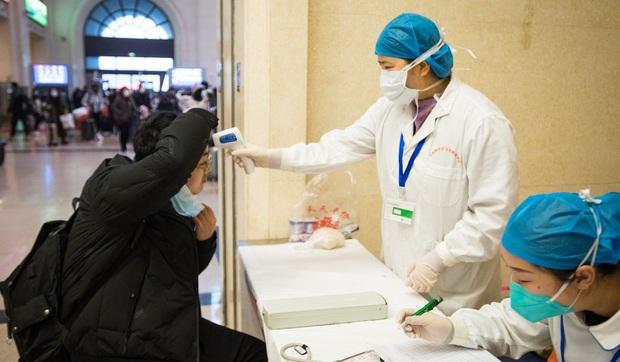 Rắn và dơi có khả năng chính là nguồn lây lan chủng virus corona gây viêm phổi ở Vũ Hán - Ảnh 5.
