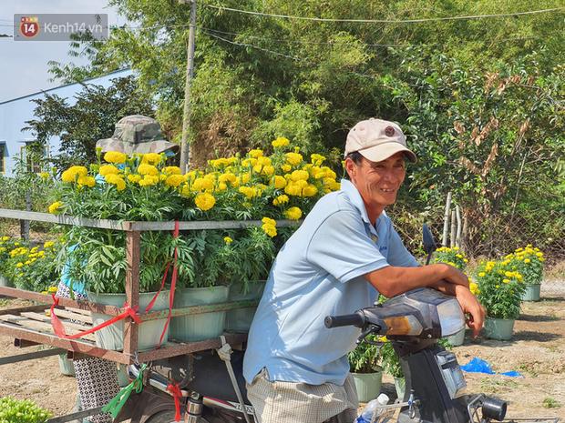 Thương lái bùng 3.000 chậu hoa vạn thọ của lão nông Sài Gòn vào 28 Tết, cộng đồng mạng chung tay mua sạch - Ảnh 1.