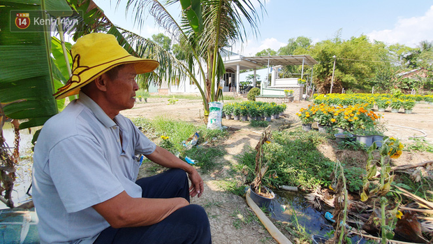 Thương lái bùng 3.000 chậu hoa vạn thọ của lão nông Sài Gòn vào 28 Tết, cộng đồng mạng chung tay mua sạch - Ảnh 7.