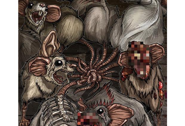 Vua chuột: Tên thì hay nhưng lại là hiện tượng kinh dị hiếm gặp và đầy nguy hiểm liên quan đến cậu Tí - Ảnh 2.