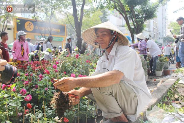 Đại hạ giá vẫn không hết, tiểu thương Sài Gòn thẳng tay đập chậu, chặt gốc hoa chứ quyết không để người dân hôi hoa trưa 30 Tết - Ảnh 5.