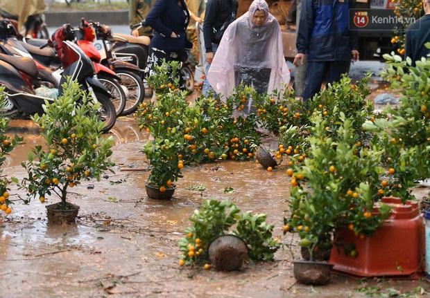Mưa gió chiều 30, dân buôn đào quất bỏ cây chạy lấy người khiến chợ hoa hồ Đền Lừ ngập rác - Ảnh 3.