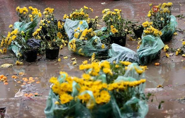 Mưa gió chiều 30, dân buôn đào quất bỏ cây chạy lấy người khiến chợ hoa hồ Đền Lừ ngập rác - Ảnh 5.