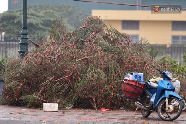 Mưa gió chiều 30, dân buôn đào quất bỏ cây chạy lấy người khiến chợ hoa hồ Đền Lừ ngập rác - Ảnh 10.