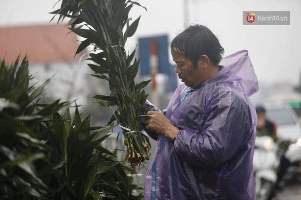 Chợ hoa Quảng An ngập trong rác, nhiều người vẫn tranh thủ đội mưa đi mua hoa Tết - Ảnh 11.