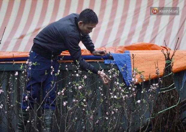 Chợ hoa Quảng An ngập trong rác, nhiều người vẫn tranh thủ đội mưa đi mua hoa Tết - Ảnh 9.