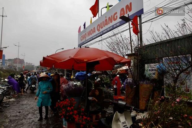 Chợ hoa Quảng An ngập trong rác, nhiều người vẫn tranh thủ đội mưa đi mua hoa Tết - Ảnh 6.