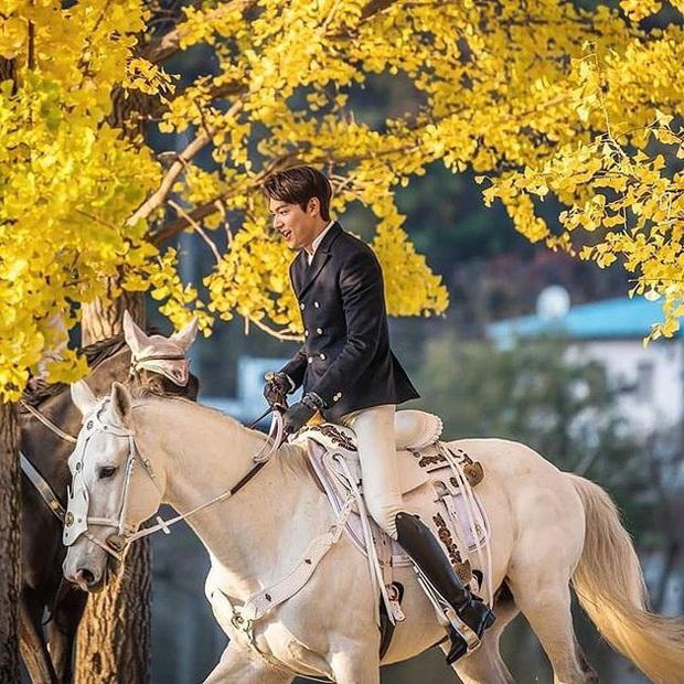 5 cặp đôi hạng xịn xông đất màn ảnh Hàn năm 2020: Lee Min Ho hay tình cũ Park Min Young sẽ ăn chắc ngôi vương? - Ảnh 2.