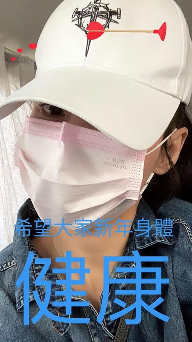 Cbiz đổ dồn sự chú ý khi Trương Bá Chi bỗng dưng ốm, phải huỷ chuyến du lịch Nhật Bản giữa lúc virus Corona hoành hành - Ảnh 1.
