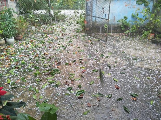 Mưa đá kèm gió lớn trút xuống TP Tuyên Quang ngày mùng 1 Tết - Ảnh 3.