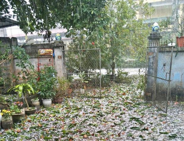 Mưa đá kèm gió lớn trút xuống TP Tuyên Quang ngày mùng 1 Tết - Ảnh 7.