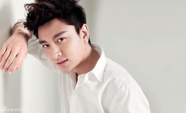 Điểm lại sương sương 9 diễn viên Hoa Ngữ tuổi Tý: Nhìn đâu cũng thấy trai xinh gái đẹp, sự nghiệp thì hơi hên xui - Ảnh 9.