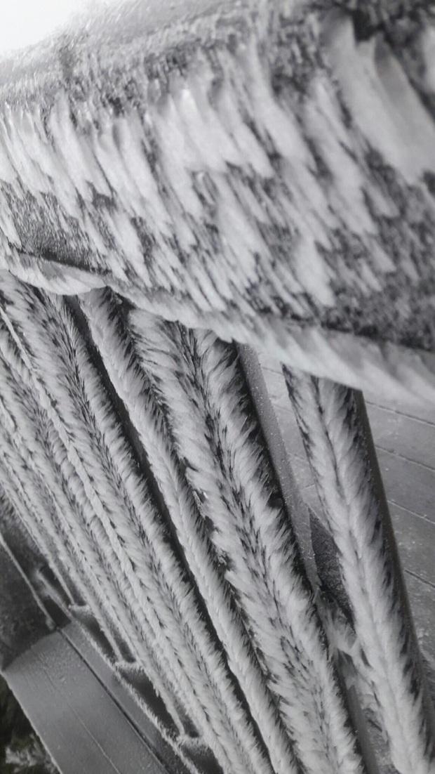 Giữa mùng 3 Tết, băng tuyết xuất hiện ở Sa Pa, dân tình lại dập dìu lên lịch cho chuyến đi đầu tiên trong năm - Ảnh 4.